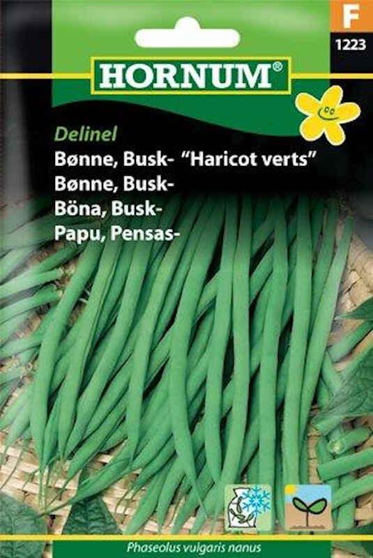 Bønnefrø - Buskbønne - Delinel/Harricot Verts
