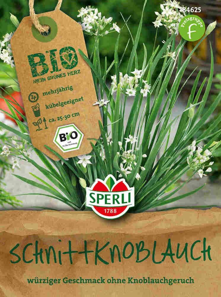 Hvidløgspurløg - Schnittknoblauch - Økologisk