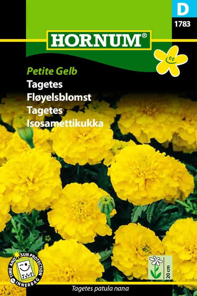 Tagetes frø - Petite Gelb