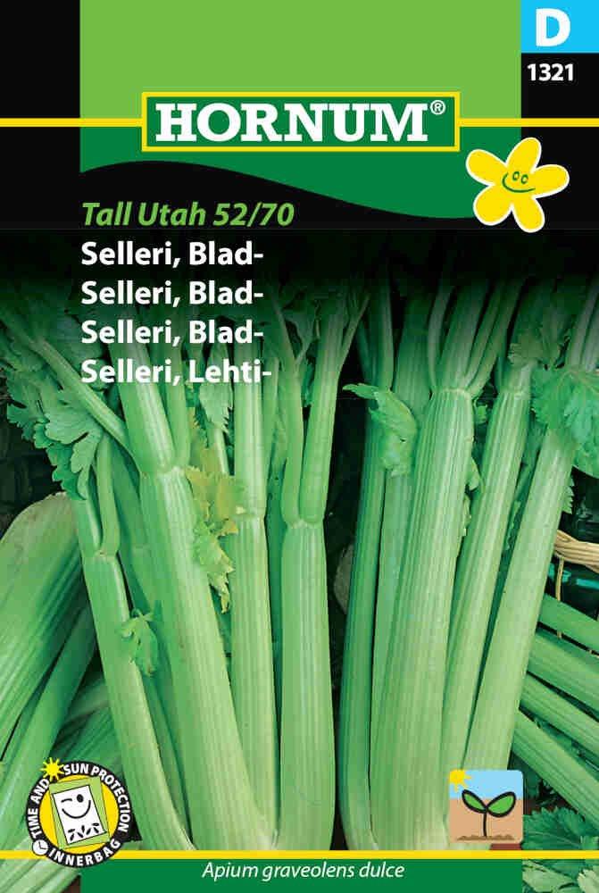 Bladselleri frø - Bladselleri - Tall Utah 52/70