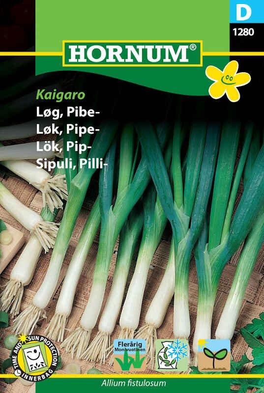 Løgfrø - Pibe - Kaigaro