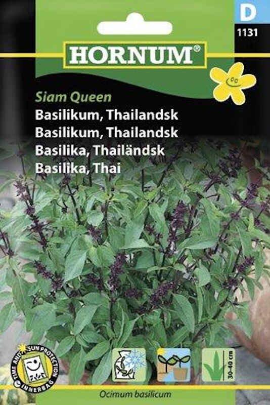 Basilikumfrø - Thailandsk, Siam Queen