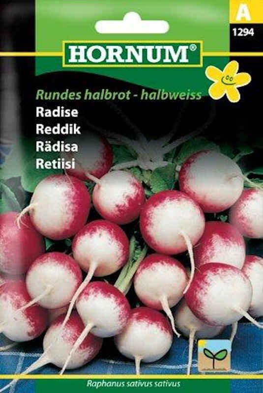 Radisefrø - Rundes halbrot-halbweiss
