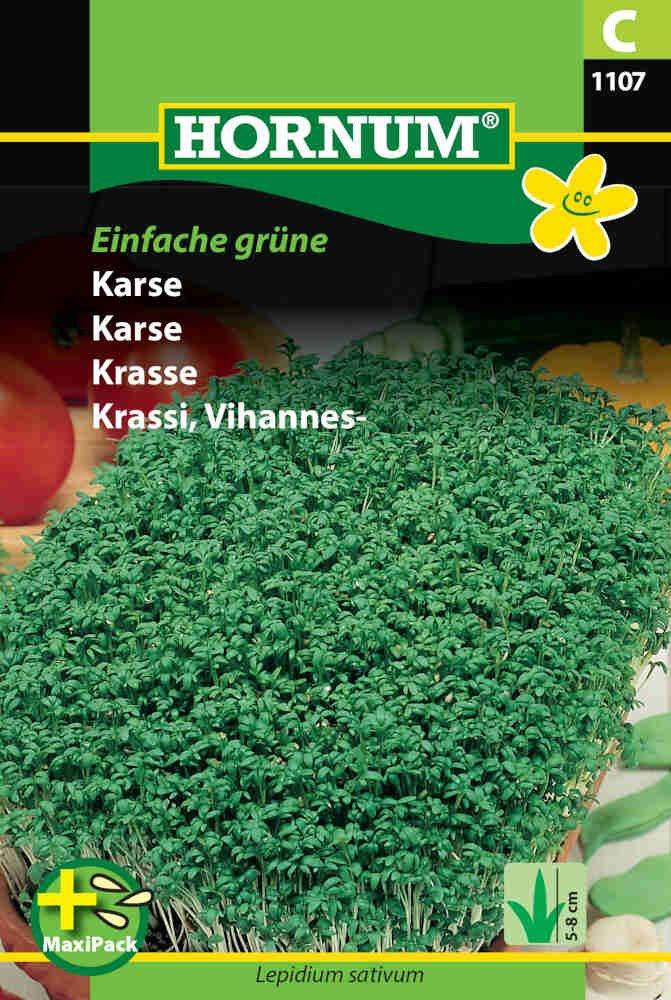 Karsefrø - Einfache grüne - MaxiPack