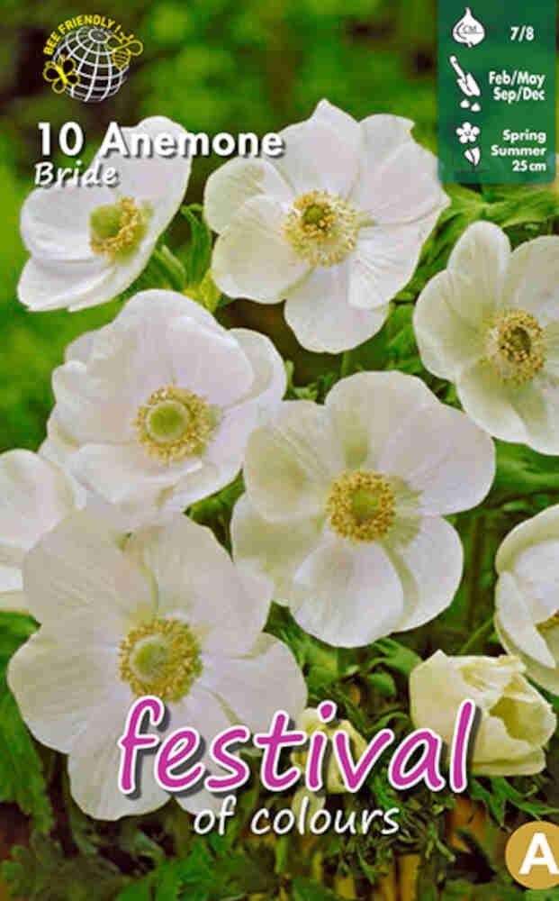 Anemone Bride 7/8