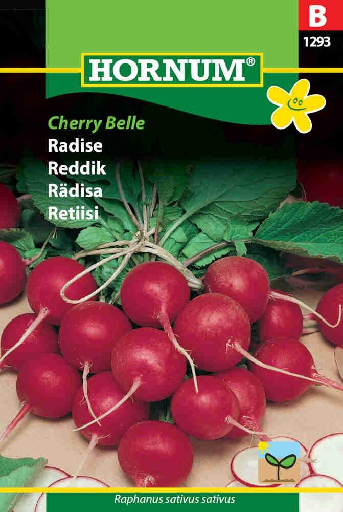 Radisefrø - Cherry Belle