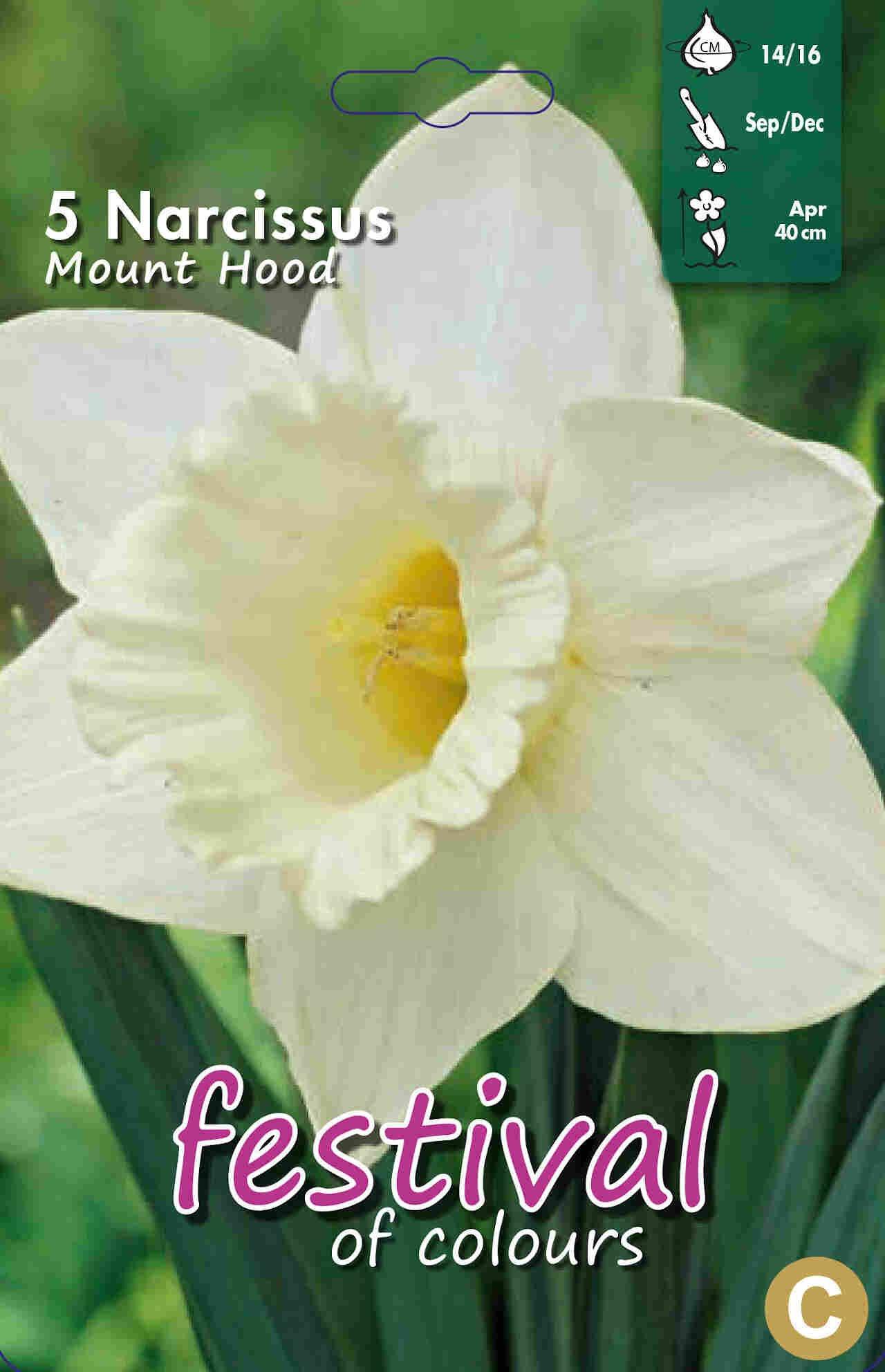 Påskelilje løg - Narcissus Mount Hood 14/16