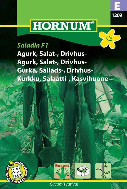 Agurkefrø - Salatagurk - Drivhus - Saladin F1