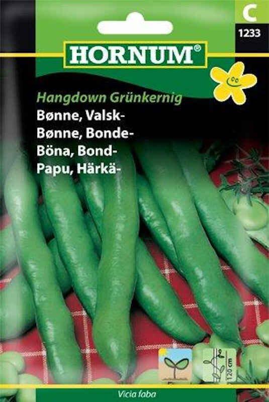 Bønnefrø - Valskbønne - Hangdown Grünkernig