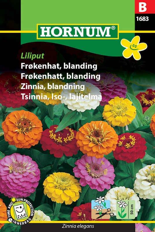 Frøkenhat frø - blanding - Liliput