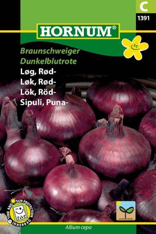 Løgfrø - Rød- Braunschweiger Dunkelblutrote