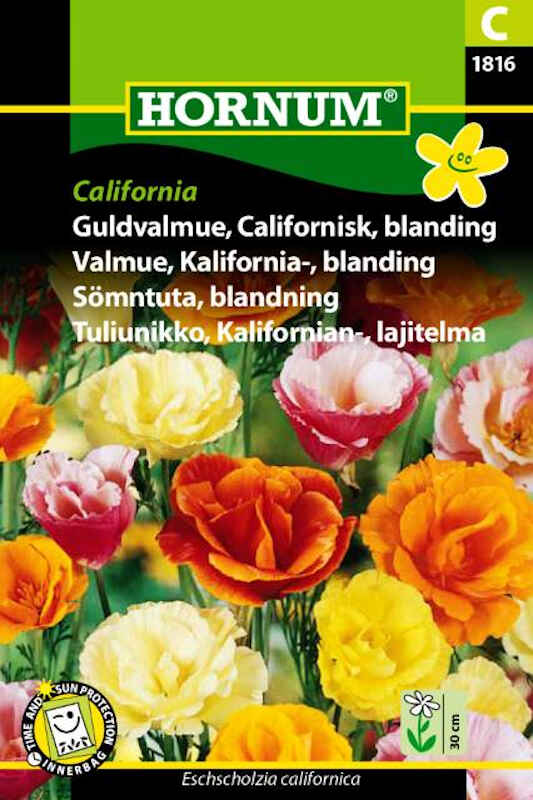 Guldvalmue frø - Californisk blanding California