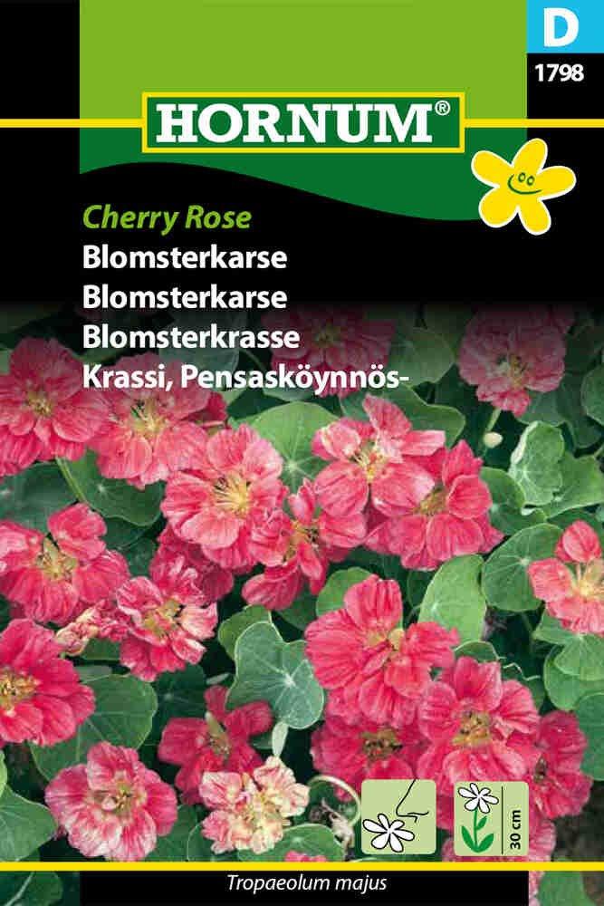 Blomsterkarse frø - Cherry Rose