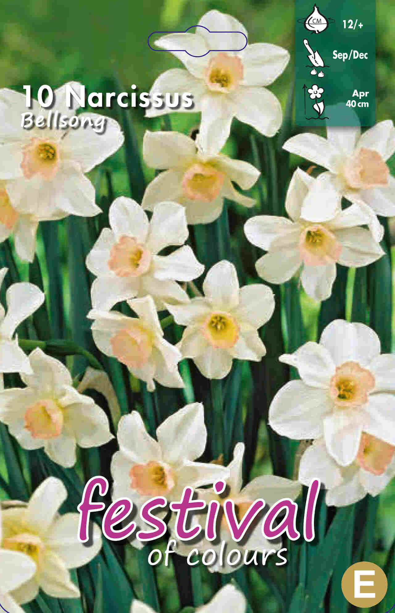 Narcisses Bell Song 12/+