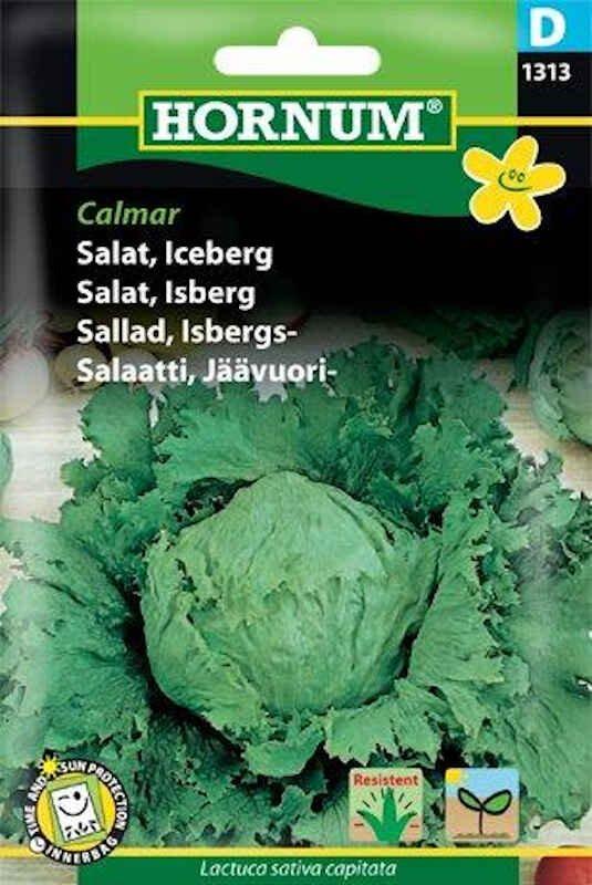Salatfrø - Iceberg, Calmar