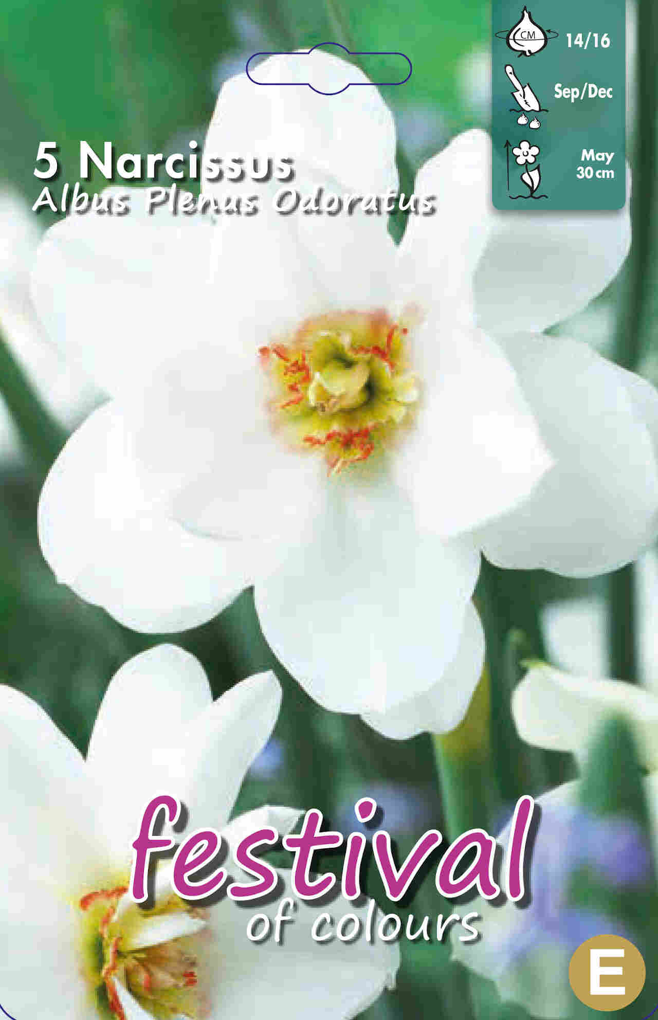 Påskeliljeløg - Narcissus Albus Plenus Odoratus 14/16