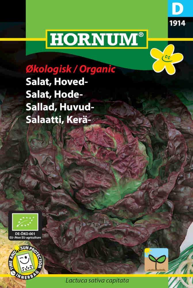 Salat frø - Hoved - Merveille des quatre saisons - Økologisk