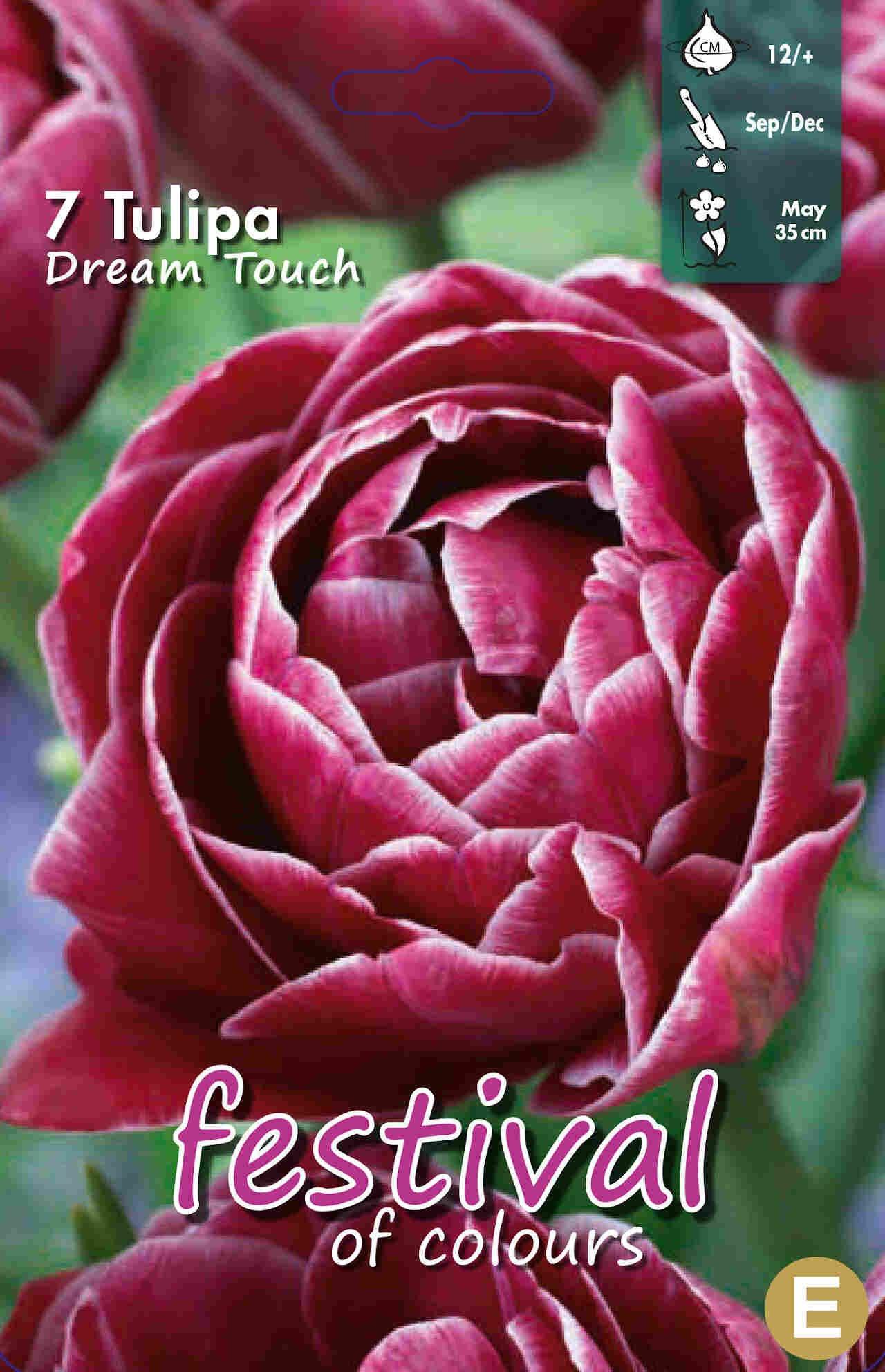 Tulipanløg - Tulipa Dream Touch 11/12
