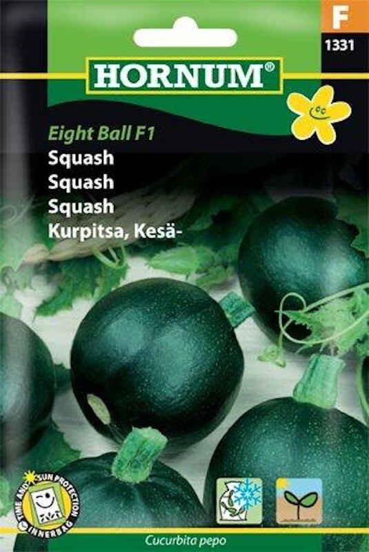 Squashfrø - Eight Ball F1