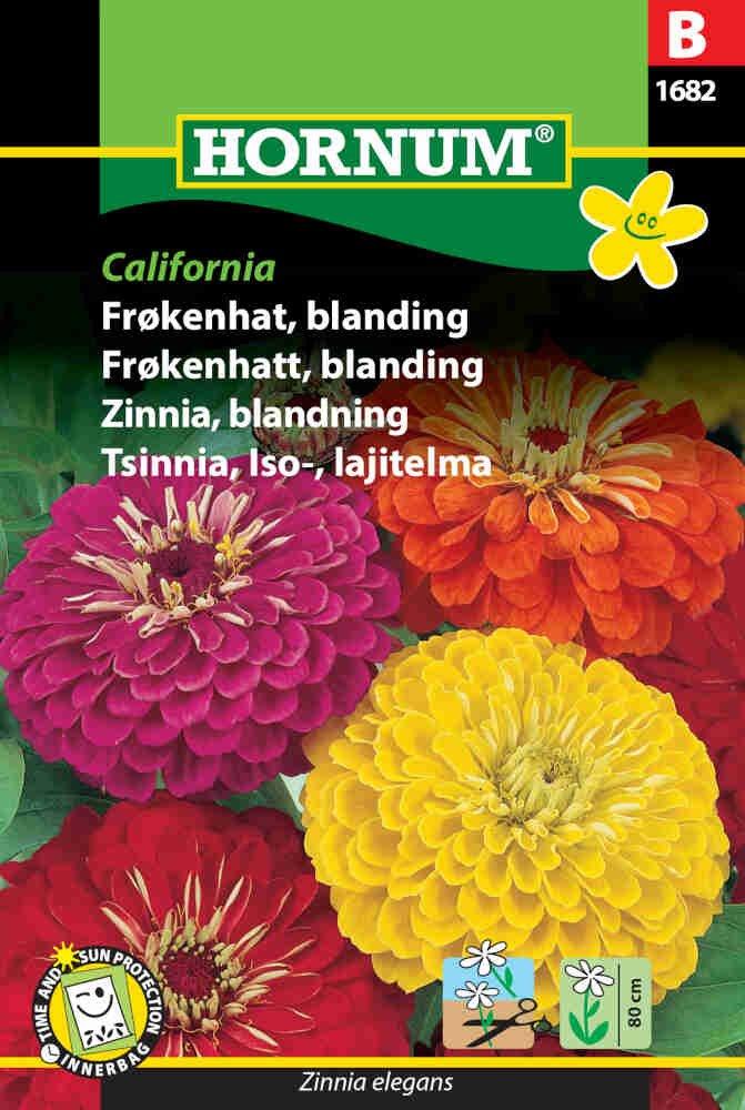 Frøkenhat frø - blanding - California
