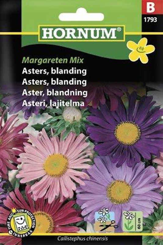 Asters frø - blanding - Margareten Mix
