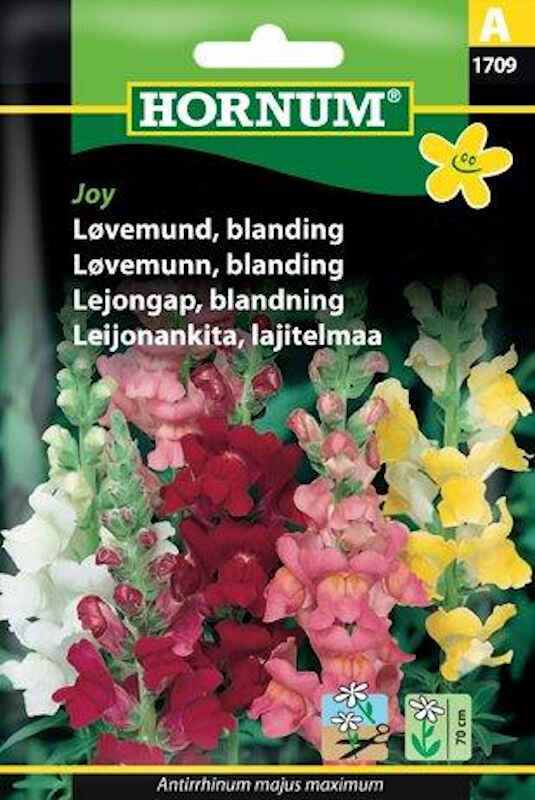 Løvemund frø - blanding - Joy