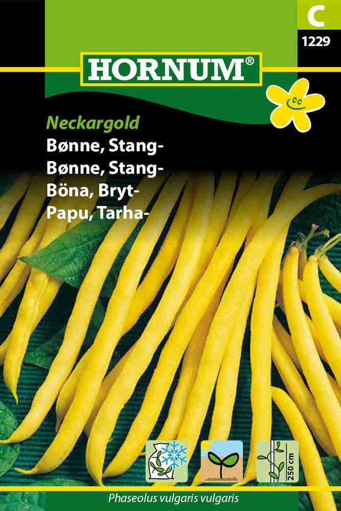 Stangbønne - Neckargold