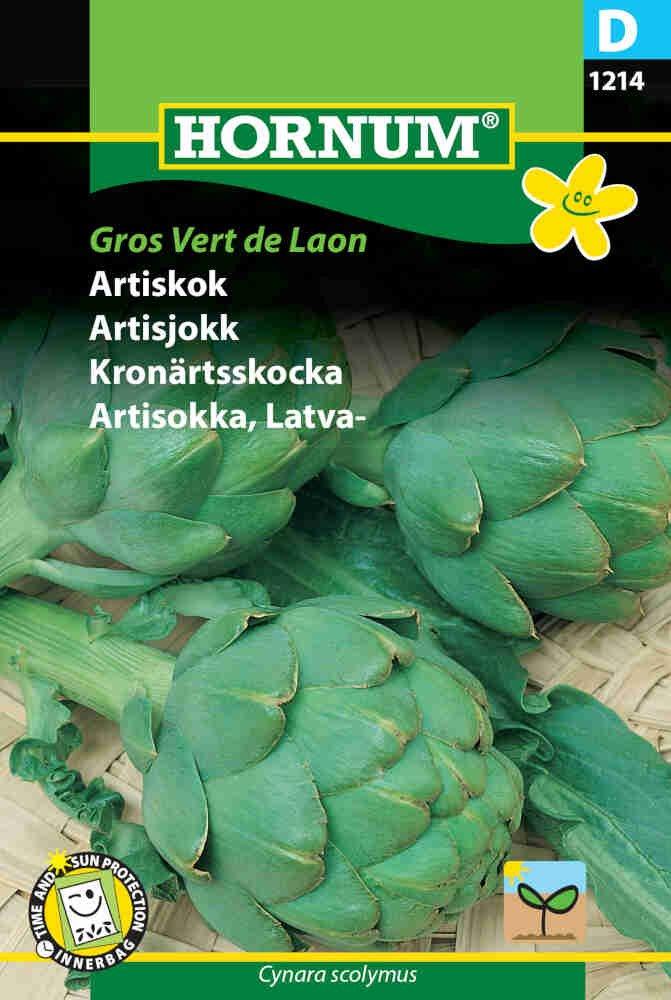 Artiskok frø - Grosse von Laon