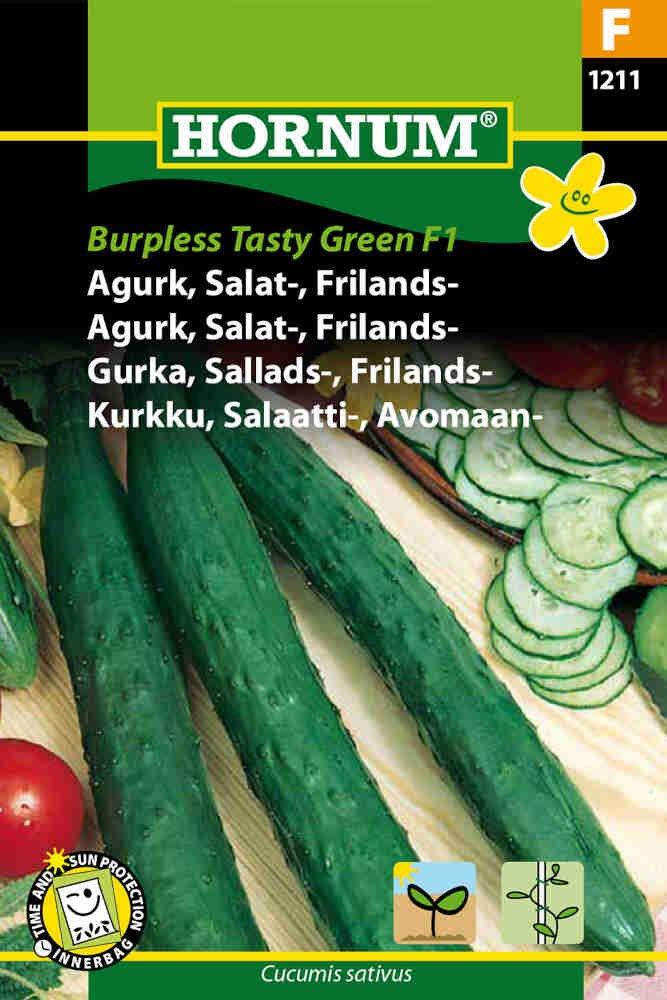Agurkefrø - Frilandsagurk - Burpless