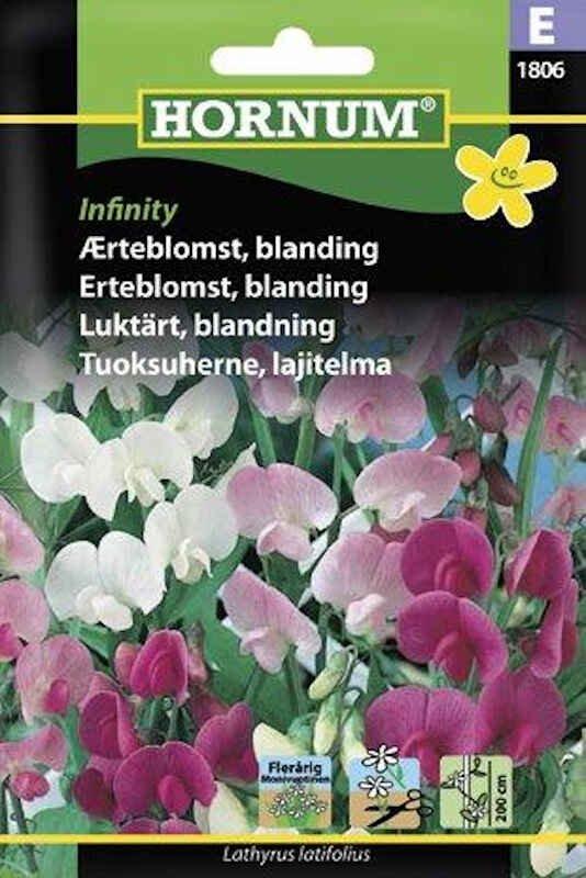Ærteblomstfrø - blanding Infinity