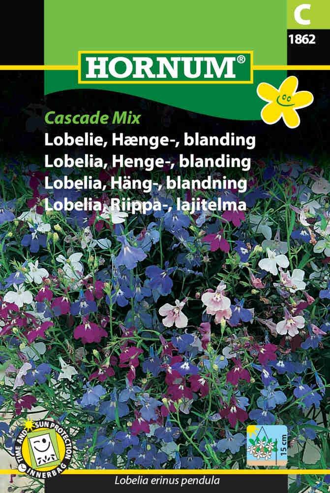 Lobelie - Hænge - bland. - Cascade Mix