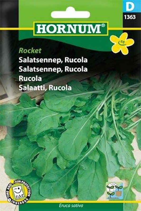 Salatfrø - Salatsennep - Rucola, Rocket