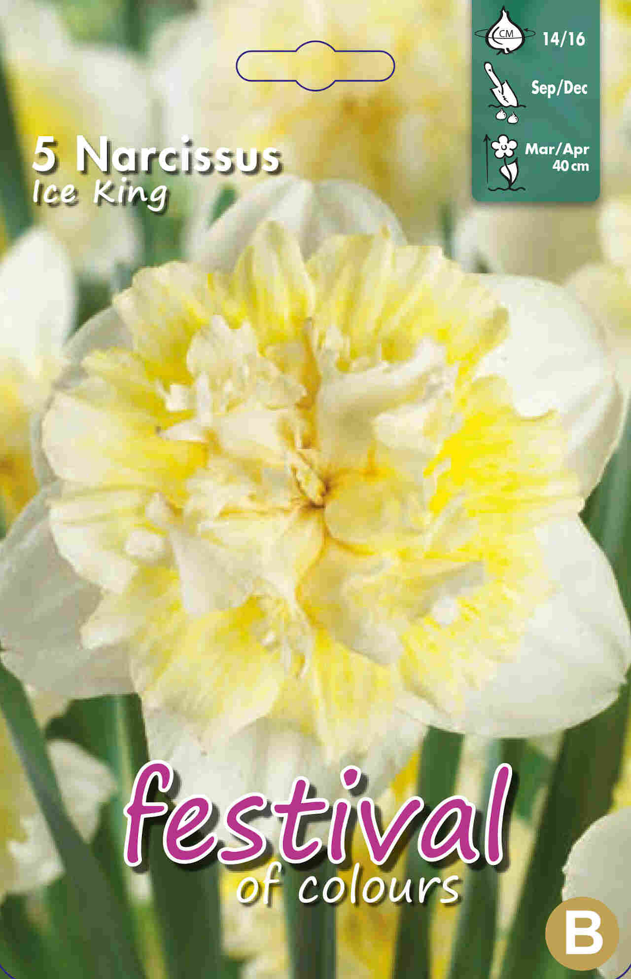 Påskeliljeløg - Narcissus Ice King 14/16