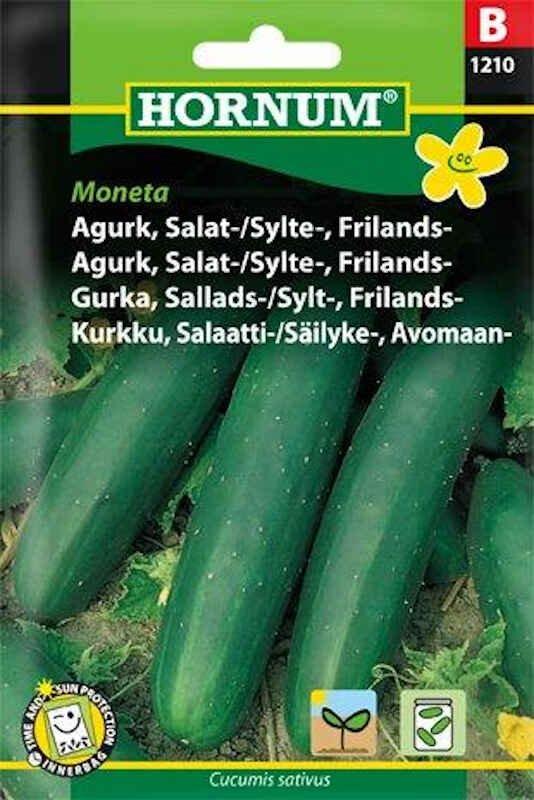 Agurkefrø - Frilandsagurk - Moneta