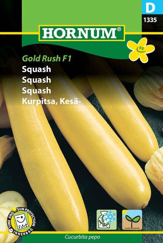 Squashfrø - Gold Rush F1