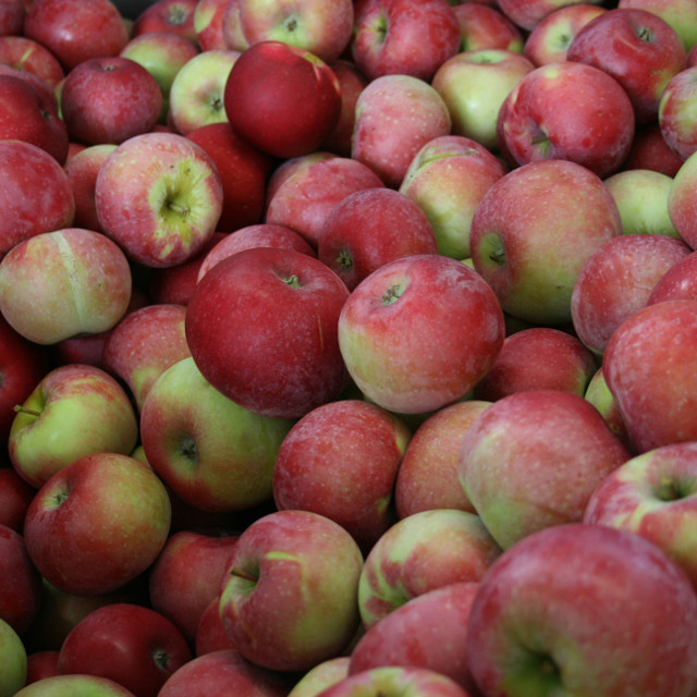 Vesterhavsmost Æblemost Rød Aroma 0,25L