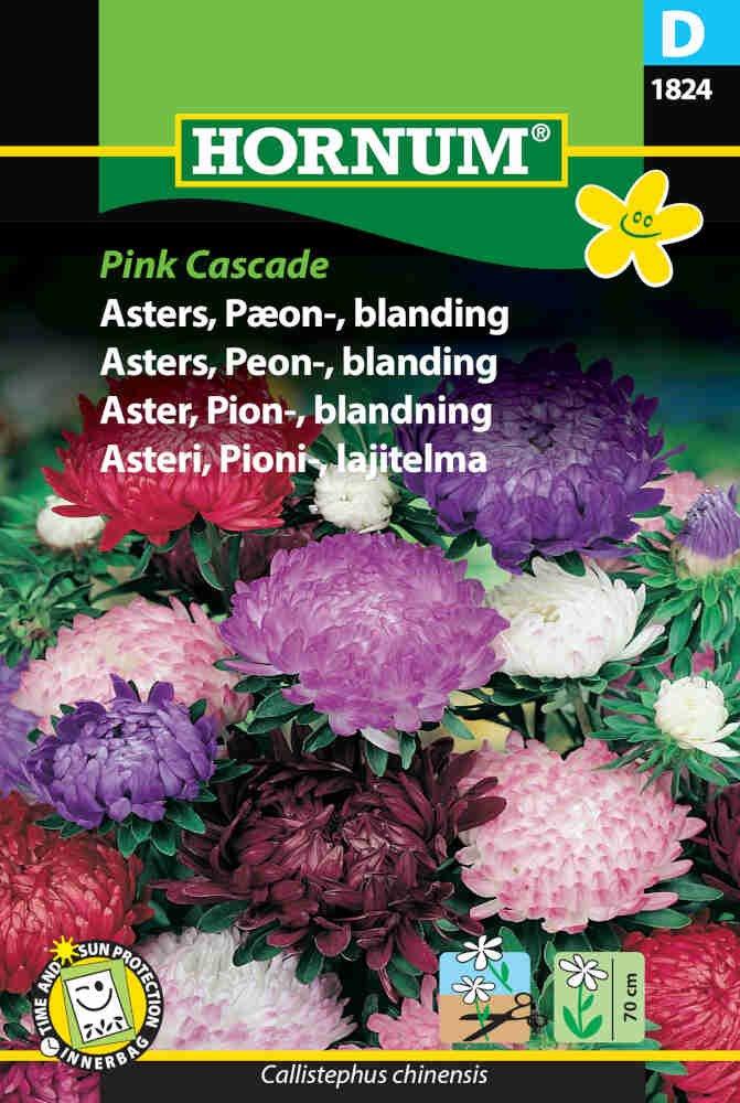 Asters frø - Pæon - blan. - Pink Cascade
