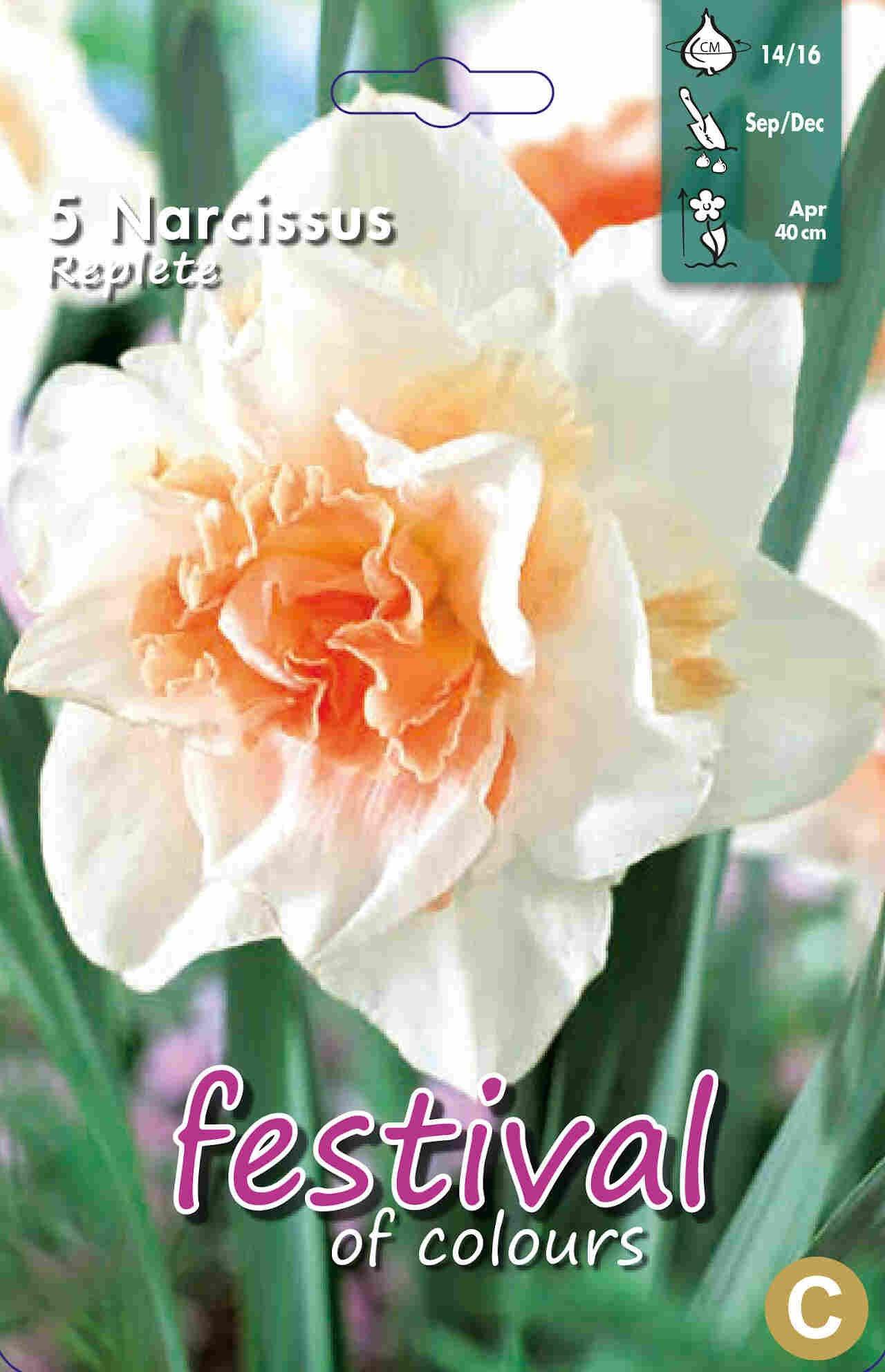 Påskeliljeløg - Narcissus Replete 14/16