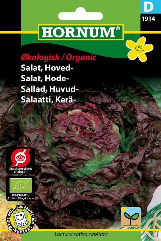 Økologisk Salat frø - Hoved - Merveille des quatre saisons