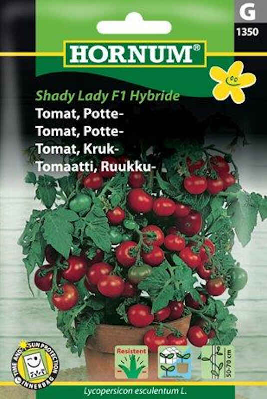 Tomatfrø - Potte - Shady Lady F1 Hybr.