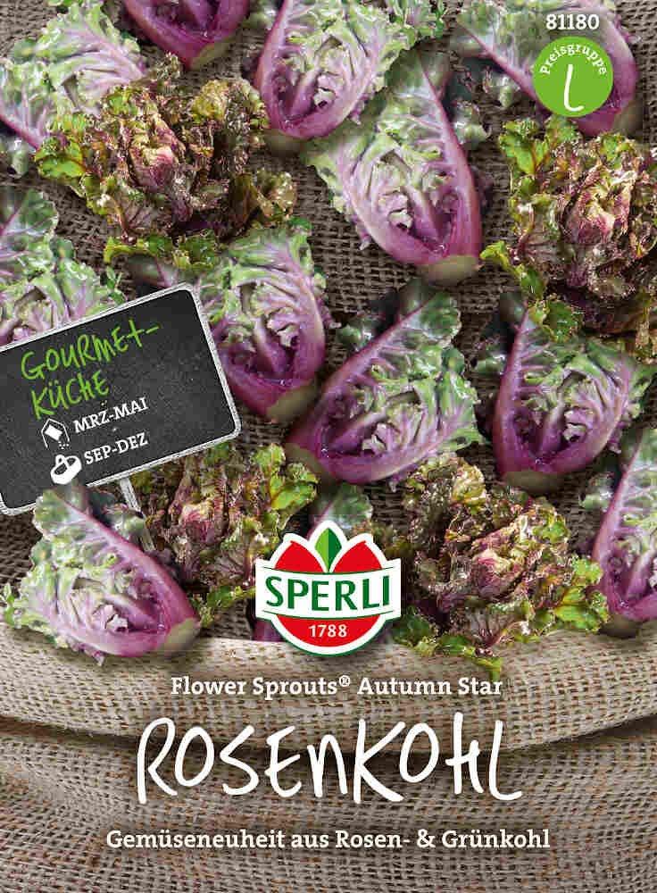 Rosenkål - Rosenkohl Flower Sprout