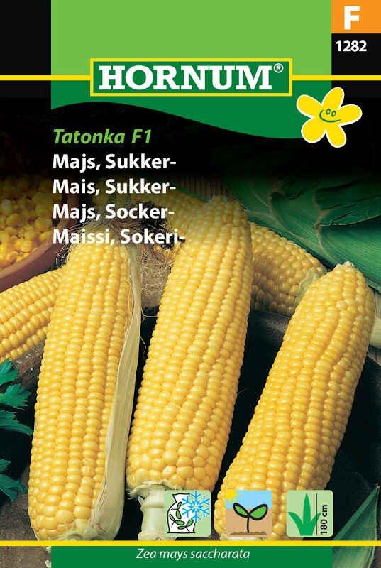 Majsfrø - Sukkermajs - Tatonka F1