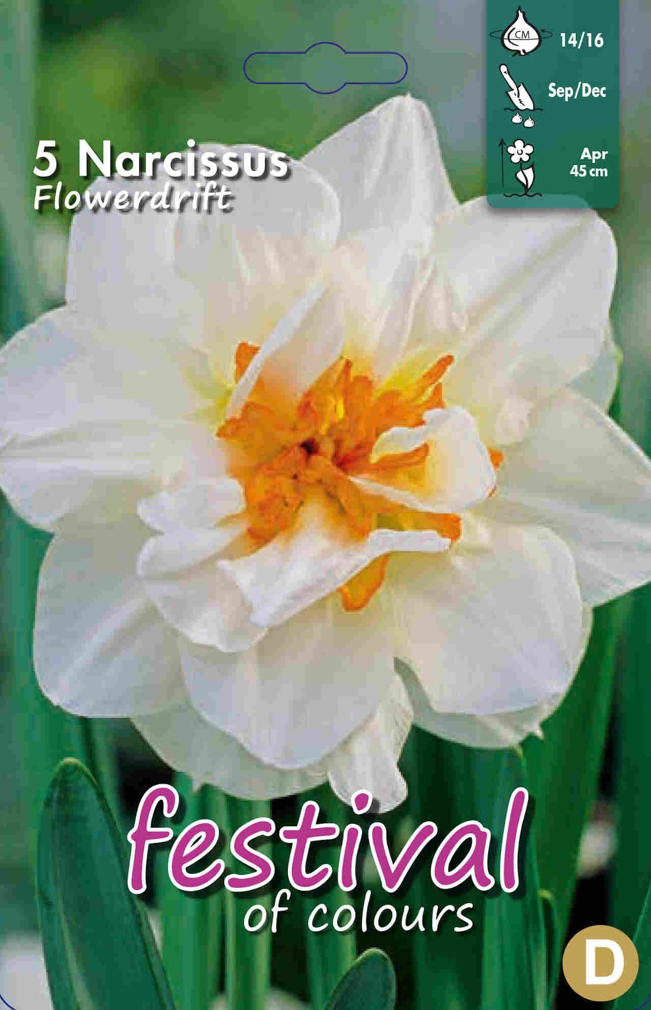 Påskeliljeløg - Narcissus Flower Drift 14/16