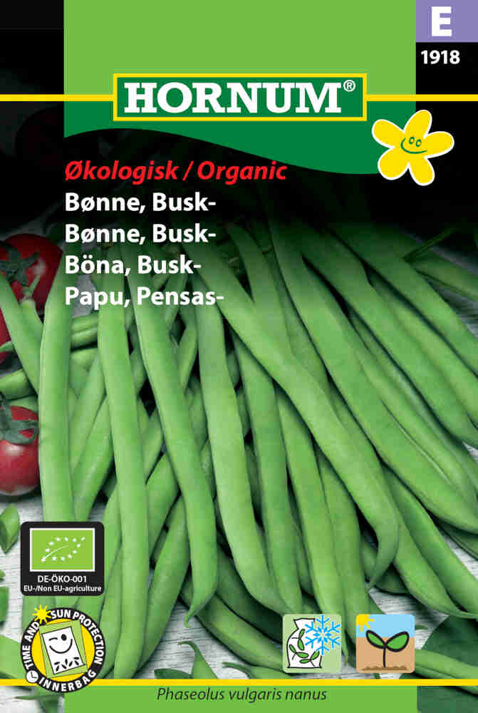 Buskbønne frø - Busk - Maxi - Økologisk