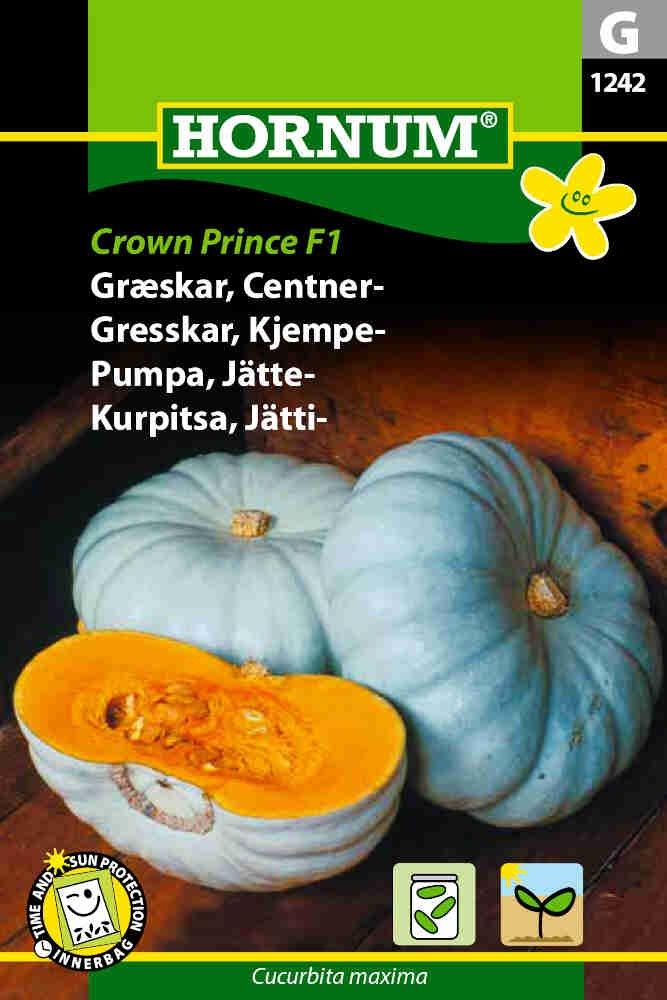Græskarfrø - Centner - Crown Prince F1