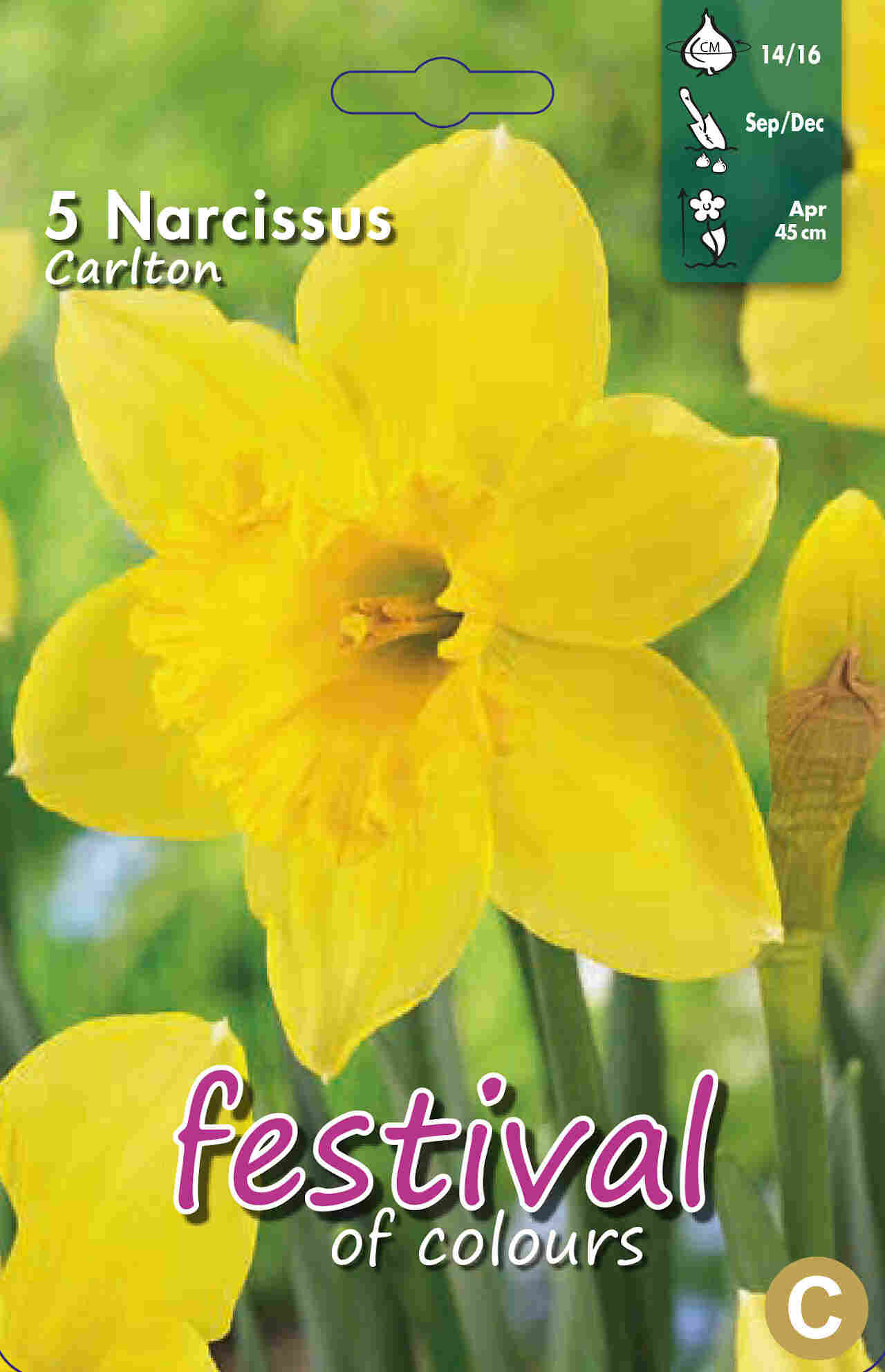 Påskeliljeløg - Narcissus Carlton 14/16