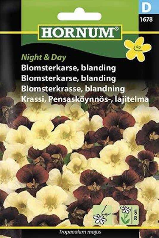 Blomsterkarse frø - blanding - Night & Day
