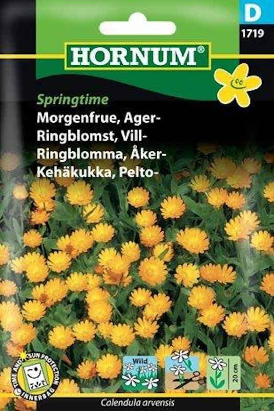 Morgenfrue frø - Ager - Springtime