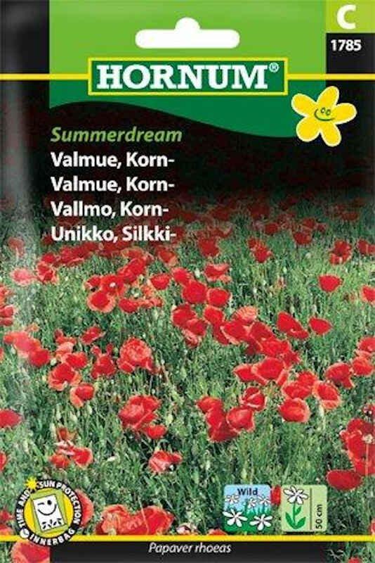 Valmuefrø - Korn- - Summerdream