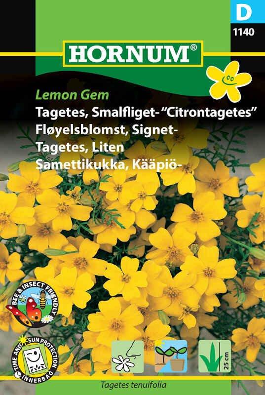 Tagetes frø - Smalfliget - Citrontagetes